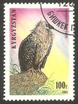 Stamps Asia - Kyrgyzstan -  Ave rapaz