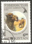 Stamps Asia - Uzbekistan -  Camellos