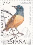 Sellos de Europa - España -  Fauna- Monticola Saxatilis       (O)