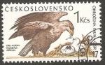 Stamps Czechoslovakia -  2807 - Fauna, águila y aguilucho