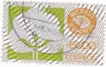Stamps Mexico -  MÉXICO EXPORTA-ALGODON