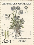 Stamps Europe - France -  Aster