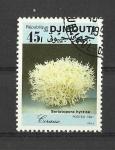 Stamps Africa - Djibouti -  Seriatopora