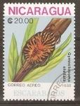 Stamps Nicaragua -  GYMNETOSOMA  STELLATA