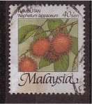 Stamps Asia - Malaysia -  serie- Frutas