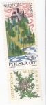 Stamps Poland -  Paisaje de NIEDZICA y Flora CARLINA ACAULIS