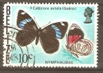 Stamps Belize -  CALLICORE  ASTALA