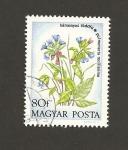 Stamps Hungary -  Pulmonaria mollissima