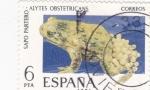 Sellos de Europa - España -  FAUNA HISPÁNICA- Sapo Partero (Q)