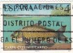 Sellos de Europa - España -  FAUNA HISPÁNICA- Carpa      (Q)