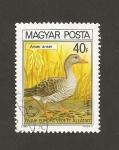 Sellos de Europa - Hungría -  Pato, Anser anser