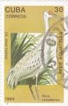 Stamps Cuba -  AVES ACUATICAS- Grus Canadensis