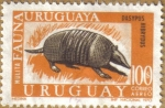 Stamps of the world : Uruguay :  FAUNA - MULITA, ARMADILLO