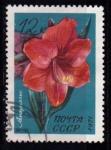 Sellos de Europa - Rusia -  Flor