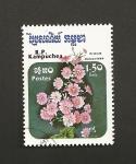 Stamps Cambodia -  Primula malacoides