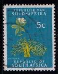 Sellos del Mundo : Africa : Sudáfrica : Baobab