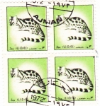 Sellos de Asia - Emiratos Árabes Unidos -  ANIMALES SALVAJES- AJMAN