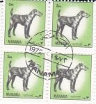 Stamps Bahrain -  ANIMALES SALVAJES- MANAMA