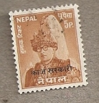 Stamps Asia - Nepal -  Rey