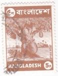 Stamps : Asia : Bangladesh :  Arbol Frutal