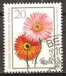 Sellos de Europa - Alemania -  iga - la cría flor(Gerbera, Gerbera jamesonii)DDR.