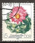 Sellos de Europa - Alemania -  Cactáceas cultivadas. Coryphantha elephantidens-DDR.