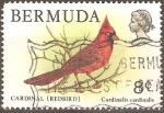 Stamps Bermuda -  PÀJARO  CARDENAL