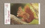 Stamps Germany -  Ardilla (Para la juventud)