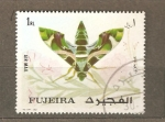 Stamps United Arab Emirates -  INSECTO