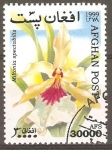 Stamps Afghanistan -  MILTONIA  SPECTABILIS