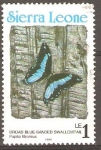 Stamps Africa - Sierra Leone -  MARIPOSA  AZUL  CON  BANDA  ANCHA