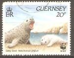 Stamps United Kingdom -  FOCA  GRIS