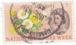 Stamps United Kingdom -  Reina Isabel II y Flores
