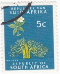 Stamps South Africa -  BAOBAB