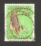 Sellos del Mundo : Africa : Sudáfrica : Mazorca de maiz