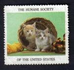Stamps United States -  Gatitos