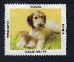 Stamps United States -  Animalitos domésticos