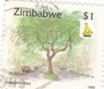 Sellos de Africa - Zimbabwe -  HANGINGTREE