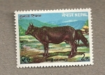 Stamps Asia - Nepal -  Vaca
