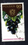 Stamps Poland -  Frutas