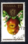 Sellos de Europa - Polonia -  Frutas
