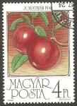 Sellos de Europa - Hungría -  3061 - Manzanas