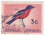 Stamps : Africa : South_Africa :  PAJARO