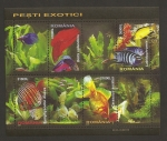 Stamps Romania -  Peces exóticos