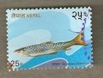 Sellos del Mundo : Asia : Nepal : Pez de río