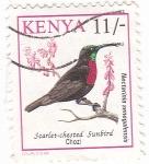 Sellos de Africa - Kenya -  Aves - Nectarinia Senegalensis