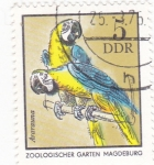 Sellos de Europa - Alemania -  ZOOLÓGICO GARTEN MAGDEBURG