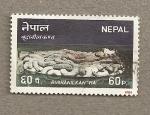 Sellos de Asia - Nepal -  Budhanilkan