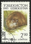 Stamps Asia - Uzbekistan -  ONDATRA - ZIBETHICA