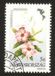Stamps Hungary -  3307 - flor americana, mandevilla splendens